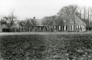 Prachtig zicht op boerderij 't Stieltjen vanaf de Wolinkweg 1950