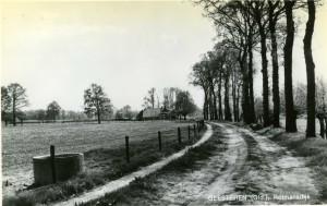 Rotmansdiekske 1960